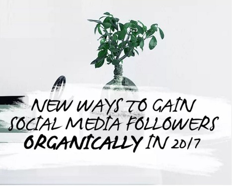 13 Ways to Grow Your Social Media Audience in 2017 | Social Media Useful Info | Scoop.it