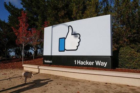 Facebook will flag false posts in your feed to tackle fake news | EDTECH - DIGITAL WORLDS - MEDIA LITERACY | Scoop.it