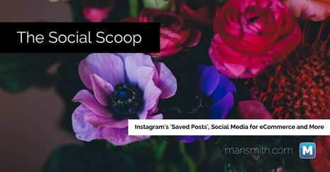 Instagram Saved Posts, Social Media for eCommerce and More: The Social Scoop 12/23/16 | overblog maroc | Scoop.it