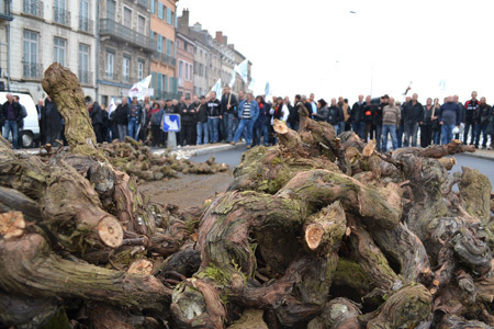 Bourgogne: Les viticulteurs manifestent contre l'escatombe   Viticulture   Scoop.it