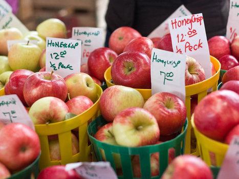 Apple Genetics | AgroWorld - November | December | Scoop.it
