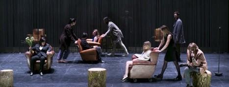 Hubert Colas revisite la Mouette   Revue de presse théâtre   Scoop.it