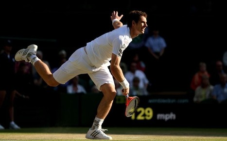 Andy Murray's appliance of science - Telegraph   Science Education   Scoop.it