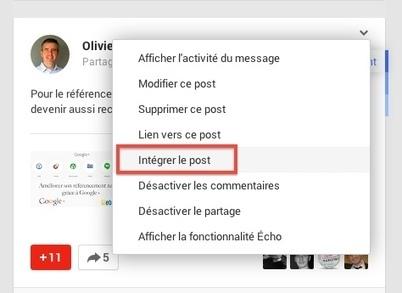 Comment intégrer un post Google+ sur son propre site ? | paradisauvage.com | Scoop.it