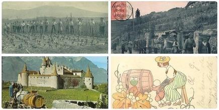 Mondes du vin | La Suisse du vin et son histoire en images | World Wine Web | Scoop.it