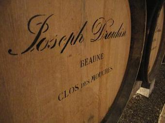Testing is adopting it... | Burgundy Flavour | Scoop.it