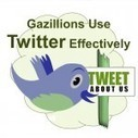How Gazillions Use Twitter Effectively To Increase Visibility | The Perfect Storm Team | Scoop.it