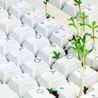 Bourses, Prix, Appels à projets Environnement.