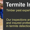 Effective Pest Inspection and Control in Brisbane