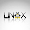 L'openness informatica: hacking e Linux