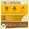 Apis apiculture - des formations en apiculture et des infos apiculturelles