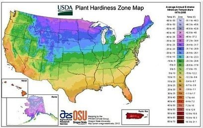 Rethinking the New Zone Hardiness Map | Sustainable ⊜ Smart Path | Scoop.it