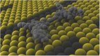 Tiny 'car' made from one molecule | #globalcamp | Scoop.it