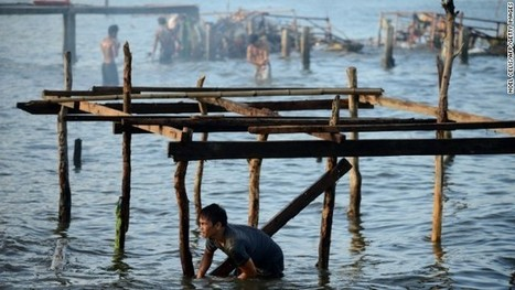 A month later, Typhoon Haiyan death toll still rising in the Philippines | Marissa's Geog400 | Scoop.it