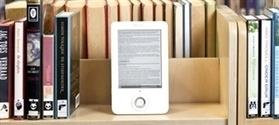 16% des Français se seraient procurés un livre numérique | Echos des Labs | Scoop.it