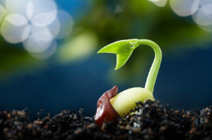 Content Marketing - 5 Ways to Give it New Life by @heidicohen   Content Marketing Journal   Scoop.it