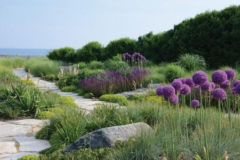 Preserving a fleeting art form: The garden | Unplug | Scoop.it