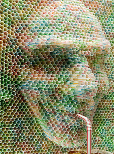 Suck It! 8 Brilliant Examples of Plastic Drinking Straw Art | WebEcoist | Up Cycled Garden | Scoop.it