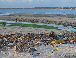 EU Commission launches a #PublicConsultation on Marine Litter   Ocean News   Scoop.it