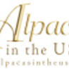 ALPACAS IN THE USA!