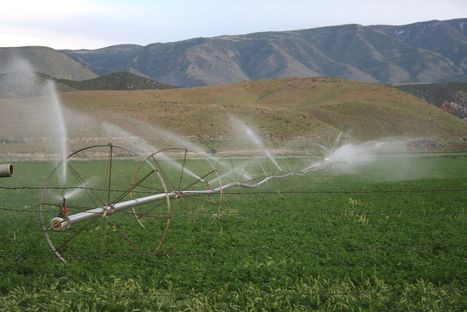 Recycled sewage water is safe for crop irrigation, study suggests | Agriculture | Scoop.it