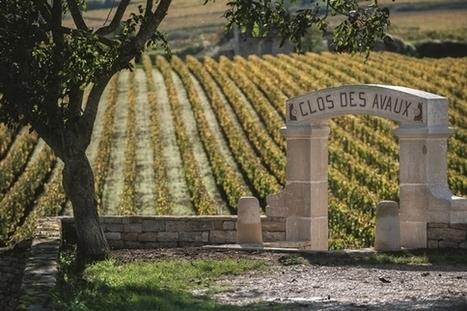 Bourgogne, Champagne: le vin n'est pas un jeu à somme nulle - Le Huffington Post   Le Vin en Grand - Vivez en Grand ! www.vinengrand.com   Scoop.it