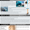 Cosmetic Surgery South Bay