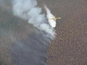 Wildfire Near Red Lake Threatens Private Land, Timber Resources   Timberland Investment   Scoop.it