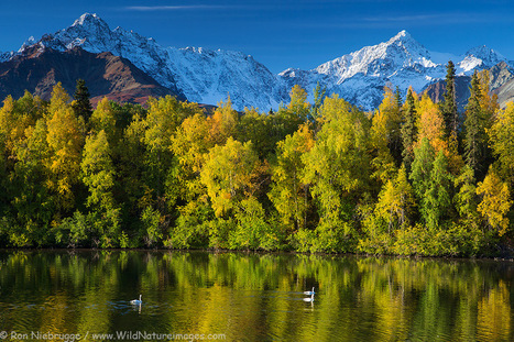 10 TOP Google+ Photographs for September 14   The Blog's Revue by OlivierSC   Scoop.it