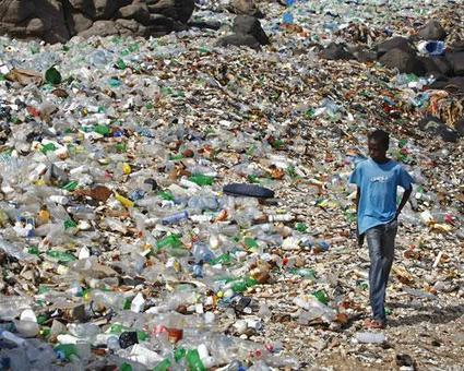 Tips to Use Less Plastic - Green Education Foundation | GEF | Sustainability Education | Education for Sustainable Development | Scoop.it
