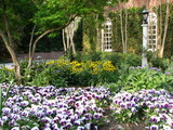 Southeast Gardener's October Checklist | Annie Haven | Haven Brand | Scoop.it
