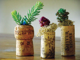 How to Make Your Own Cork Planters   The Saturday Evening Post   ideas verdes   Scoop.it