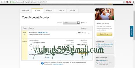 bank transfer' in WWW WUBUGZ NET HACKED PAYPAL transfers,WESTERN