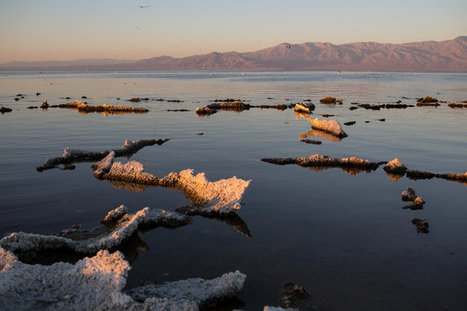 Preserving an Accident, the Salton Sea in California, for the Good of Nature | Upsetment | Scoop.it