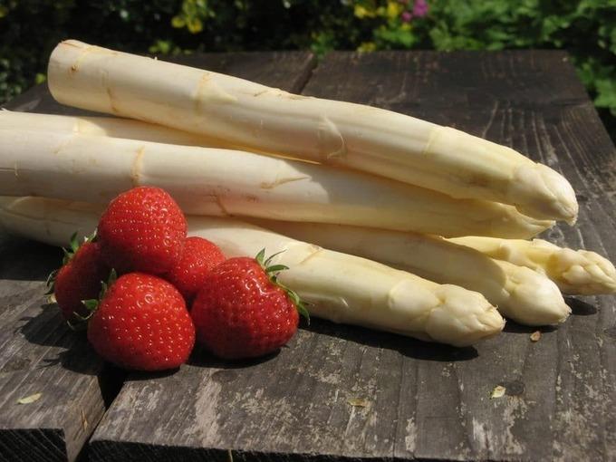 Dans le Sud, le cri d'alarme des producteurs de fraises et d'asperges