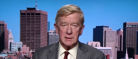 Libertarian VP candidate: 'I'm here vouching for Mrs. Clinton'   enjoy yourself   Scoop.it