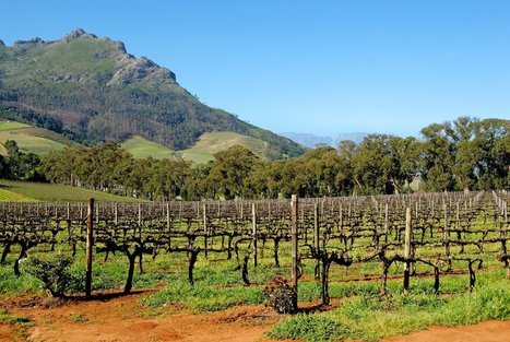 6 Under-the-Radar Wine Regions You Should Be Drinking From Now | Gastronomy & Wines | Scoop.it
