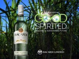 Bacardi Approaches Sustainability in High Spirits - Justmeans (blog) | Seeds of Sustainability | Scoop.it