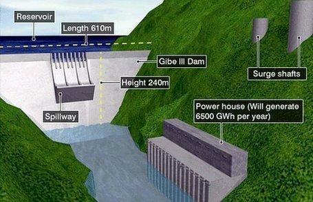 5 Environmental Effects of Dams