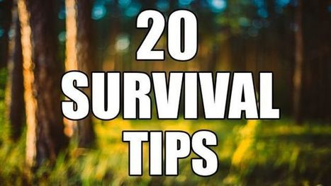 Make a Fish Hook Out of a Zipper, and More Useful Survival Tips | Bazaar | Scoop.it
