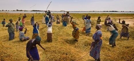 Voici comment l'Afrique pourrait bientôt contrôler l'Europe | Actions Panafricaines | Scoop.it
