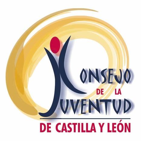 Ofertas de empleo de auxiliares administrativos y técnico para el Consejo de la Juventud de Castilla y León | Empleo Palencia | Scoop.it