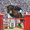 Show Jumping World