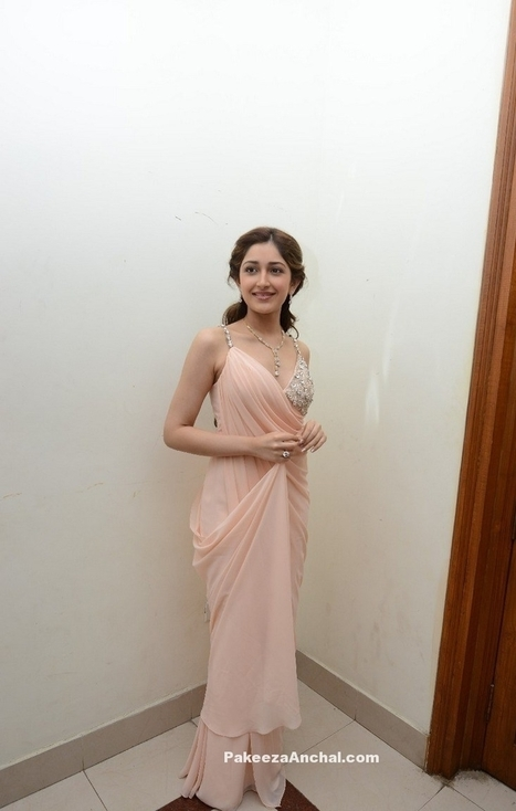 756941acb318c Sayesha Saigal in Plain Powdered Pink Saree with Sleeveless Embroidery work  Blouse