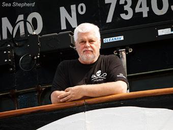 Sea Shepherd :: Statement from Captain Paul Watson   Nature Animals humankind   Scoop.it