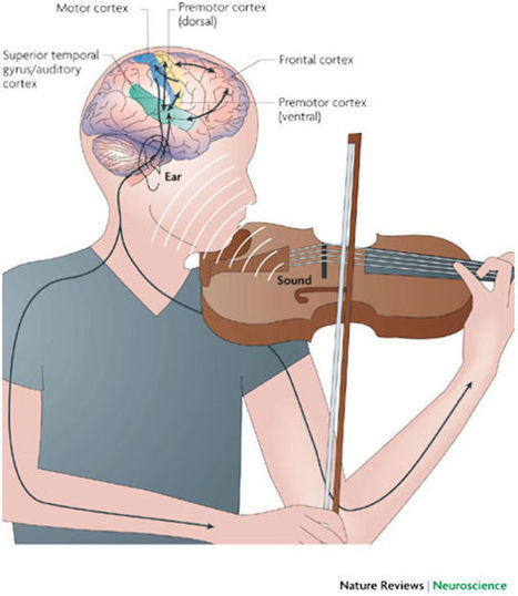 How Music Affects and Benefits Your Brain | the psychology of music | Scoop.it