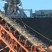 Chile, Brazil and Uruguay among the world's leading exporters of wood chips | Timberland Investment | Scoop.it