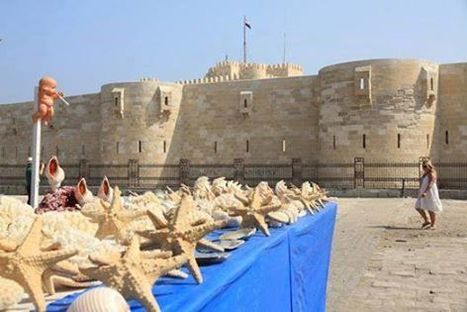 The Qaitbay Citadel in Alexandria | Egypt Tour Package That Fits All Budgets | Scoop.it