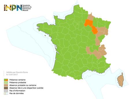 Distribution du frelon asiatique en France au 13/01/2017 | EntomoNews | Scoop.it