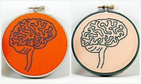 Male and Female Brains Really Are Built Differently | GIBSIccURATION | Scoop.it